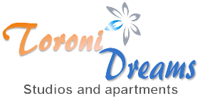 toroni dreams logo medium